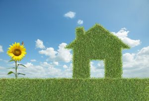 energy-efficiency-green-home